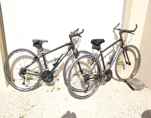 View of the hybrid TREK Bikes used in our tours.