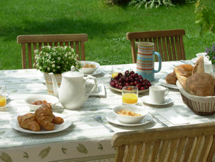 Provence bike tours, France - Breakfast buffet on the terrace under the vines.