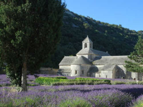 View of the Senanque Abbey near Gordes.
